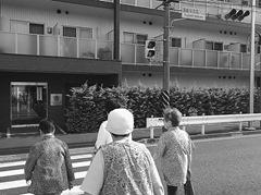 「藤崎保育園入口」歩行者「青」信号が延長